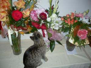 milujem kvety