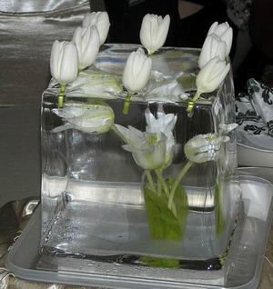 """Aká by asi mohla byť výzdoba - jéééj - toto je krásne...... a na konci svadby - by isto všetky tie tulipániky boli """"oslobodené"""" - ale je to nádhera"""