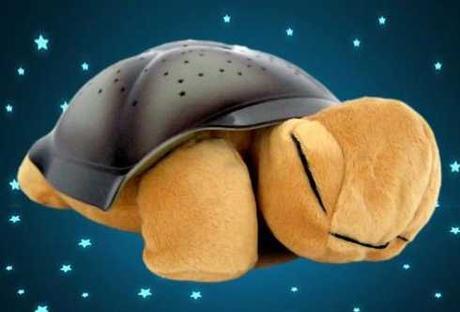 Nočná svietiaca korytnačka hnedá - Obrázok č. 1