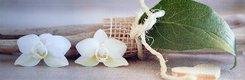 Obraz na plátne 30x90cm orchidea & list bielo-šedý,