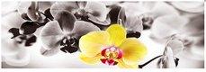 Obraz na plátne 45x140cm KVETY žltý,