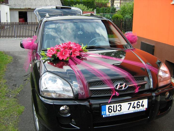 Petůnka{{_AND_}}Alešek - Mé vozítko
