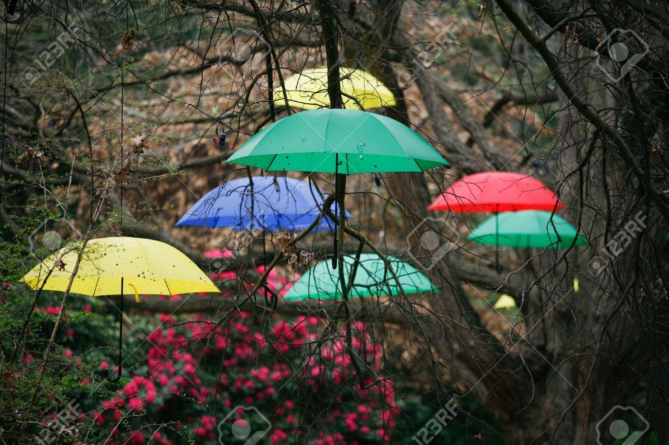 @alkab828 jee tie dáždniky... - Obrázok č. 2