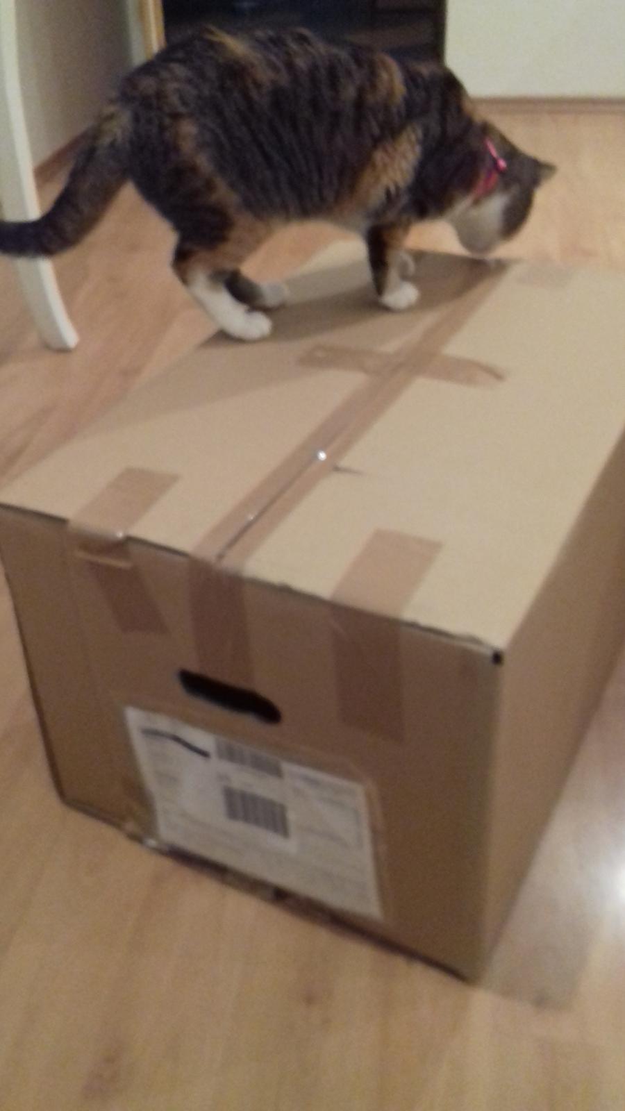 Prišla stuhou previazaná škatuľka a v nej bola vysnívaná taburetôčka :-) Predčasné vianoceeee mám :-D - Obrázok č. 1