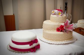 Malu tortu robila moja druzicka, ta z cukrarne sa podla mna moze schovat.