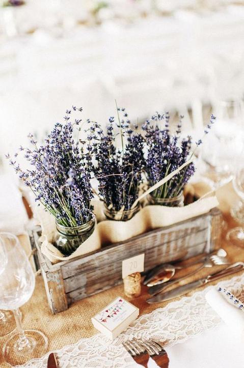 Květiny a výzdoba - Obrázek č. 20