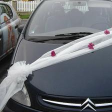 Tak takto bude vyzdobeno nevěstino auto:-)