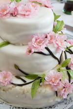 Svatební dort - přesně podle našich představ, jen ho trochu pomuchlalo sluníčko