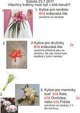 instrukce pro floristku :D