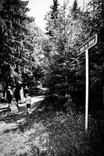 cesta ke kapli probíhala pěšky lesem... :-)