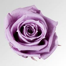 Barva mých růží ve svatební kytce:)