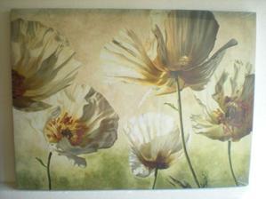 Biele maky - obraz 80x60 cm ..... krásny (studio-taba.cz)