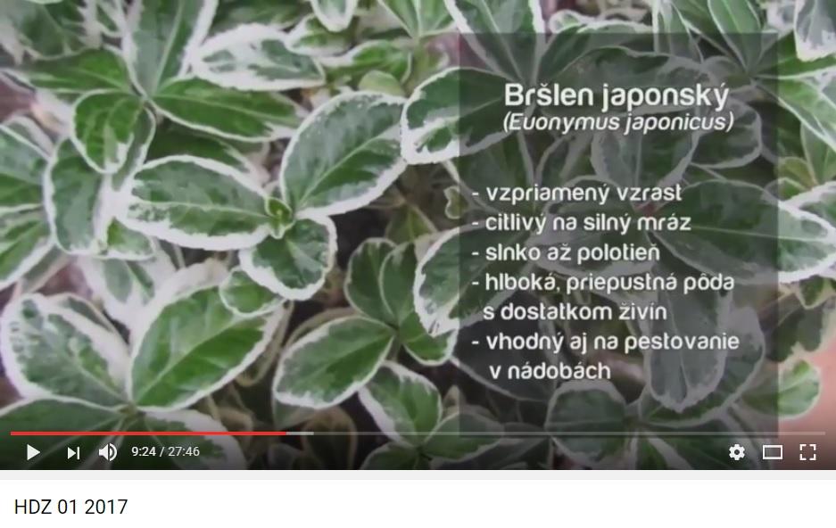 Herbár kvetín, kríkov a stromov - Obrázok č. 16