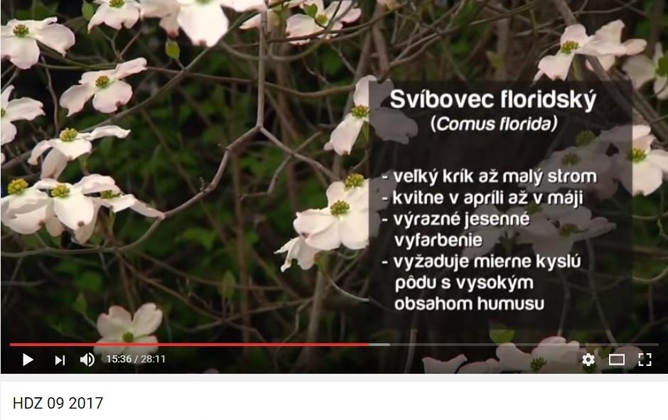 Herbár kvetín, kríkov a stromov - Obrázok č. 12