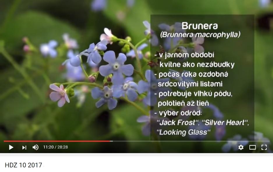 Herbár kvetín, kríkov a stromov - Obrázok č. 13