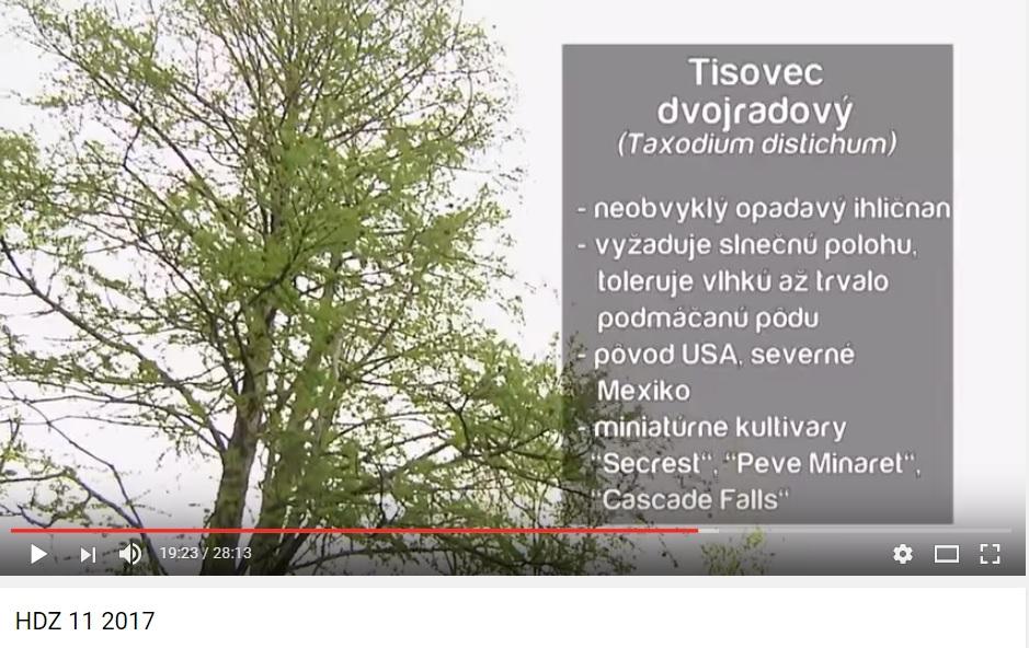 Herbár kvetín, kríkov a stromov - Obrázok č. 23