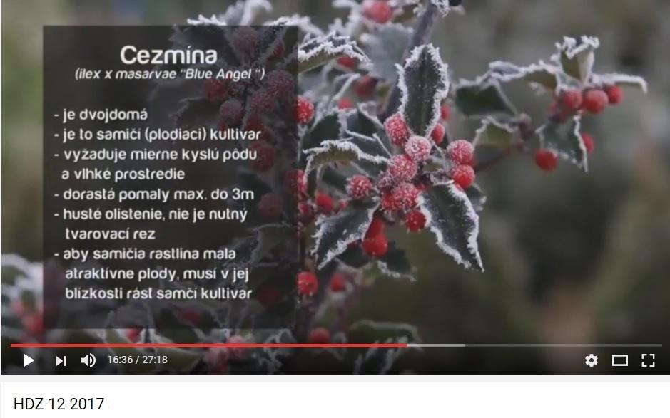 Herbár kvetín, kríkov a stromov - Obrázok č. 27