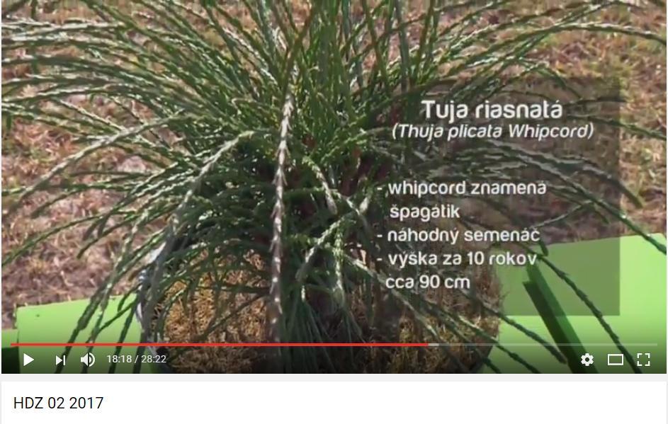 Herbár kvetín, kríkov a stromov - Obrázok č. 37