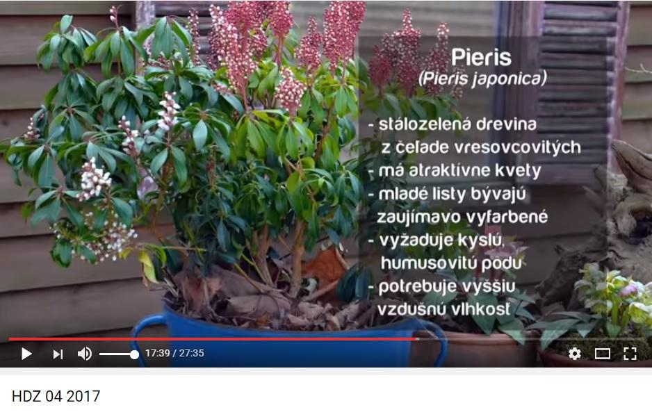 Herbár kvetín, kríkov a stromov - Obrázok č. 44