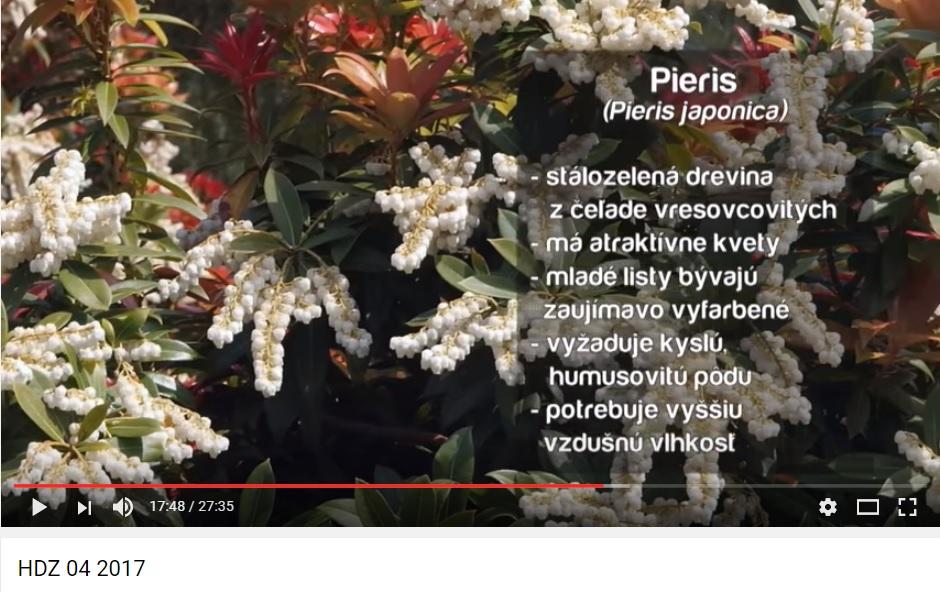 Herbár kvetín, kríkov a stromov - Obrázok č. 45