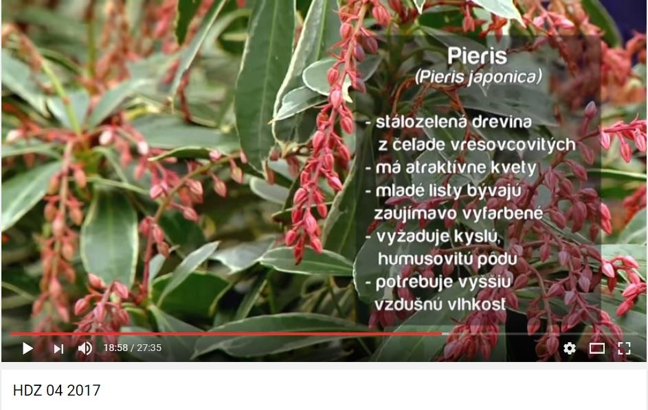 Herbár kvetín, kríkov a stromov - Obrázok č. 46