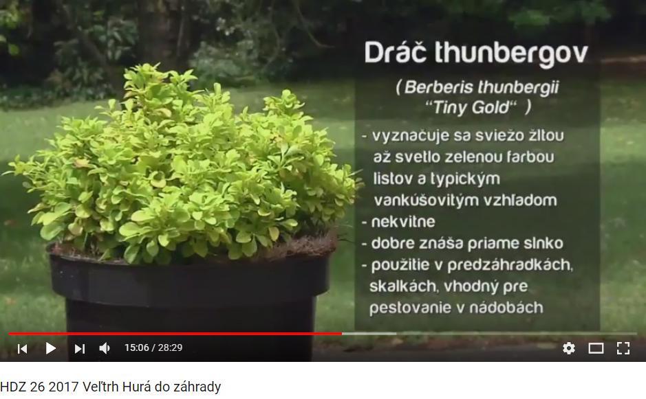 Herbár kvetín, kríkov a stromov - Obrázok č. 56