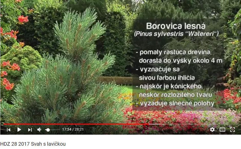 Herbár kvetín, kríkov a stromov - Obrázok č. 58
