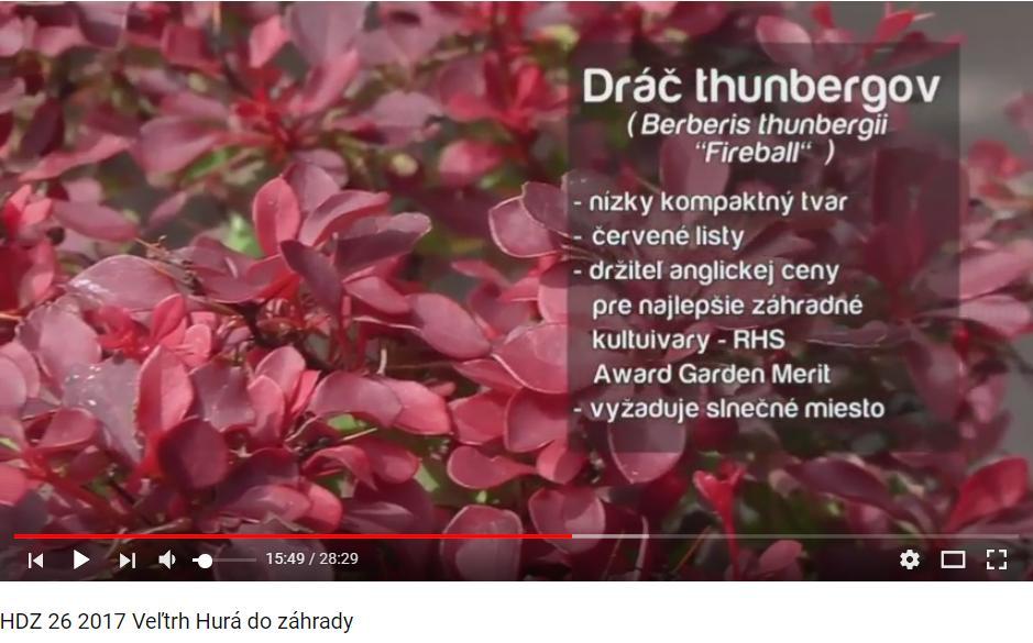 Herbár kvetín, kríkov a stromov - Obrázok č. 59