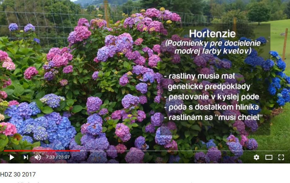 Herbár kvetín, kríkov a stromov - Obrázok č. 77