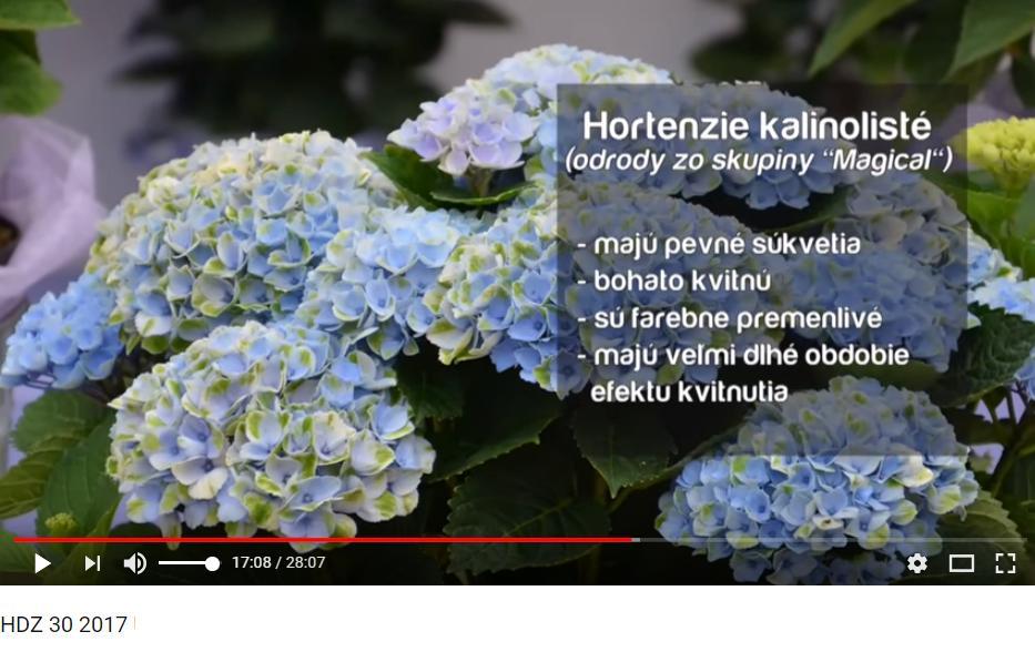 Herbár kvetín, kríkov a stromov - Obrázok č. 79