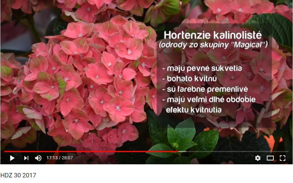 Herbár kvetín, kríkov a stromov - Obrázok č. 80