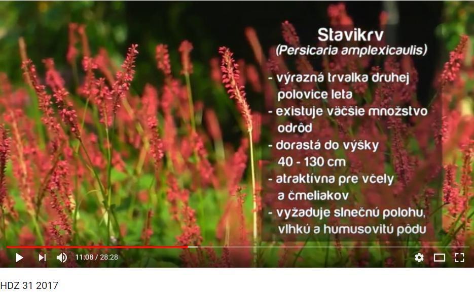 Herbár kvetín, kríkov a stromov - Obrázok č. 94