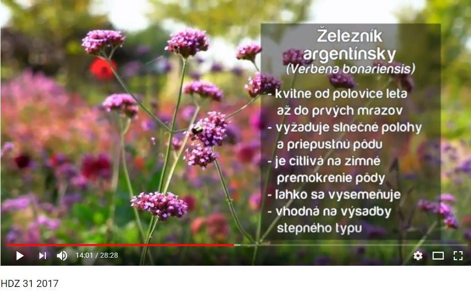 Herbár kvetín, kríkov a stromov - Obrázok č. 96
