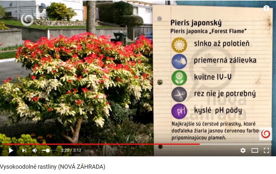 Herbár kvetín, kríkov a stromov - Obrázok č. 144