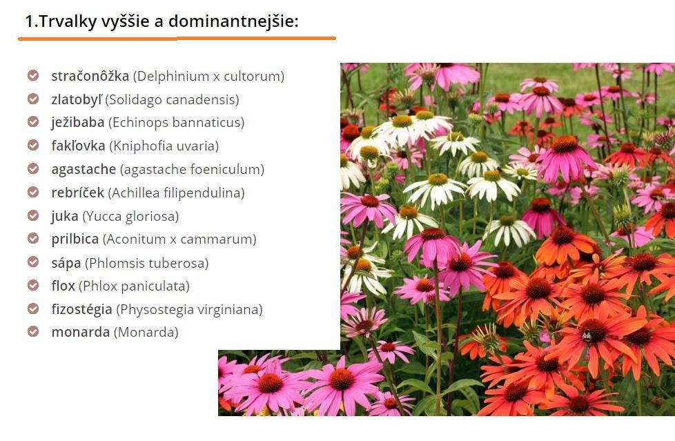 Herbár kvetín, kríkov a stromov - Obrázok č. 2