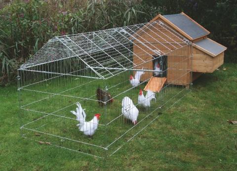 Chov domácich zvierat v obytnej zóne - - Domace z... 336dadcecfb