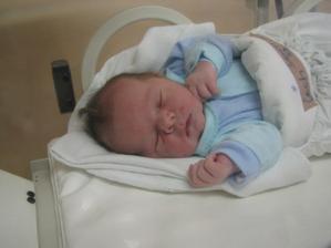 A takýto ušiačik Samko sa nám narodil 21.11.2008.