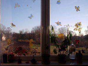 pokojíčkové okno
