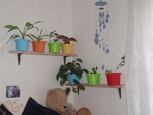 nové poličky od manžela dolaďují stěnu v obýváku