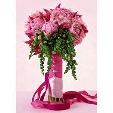 další kráska -  začánám si být čím dál míň jistá jakou kytku budu chtít