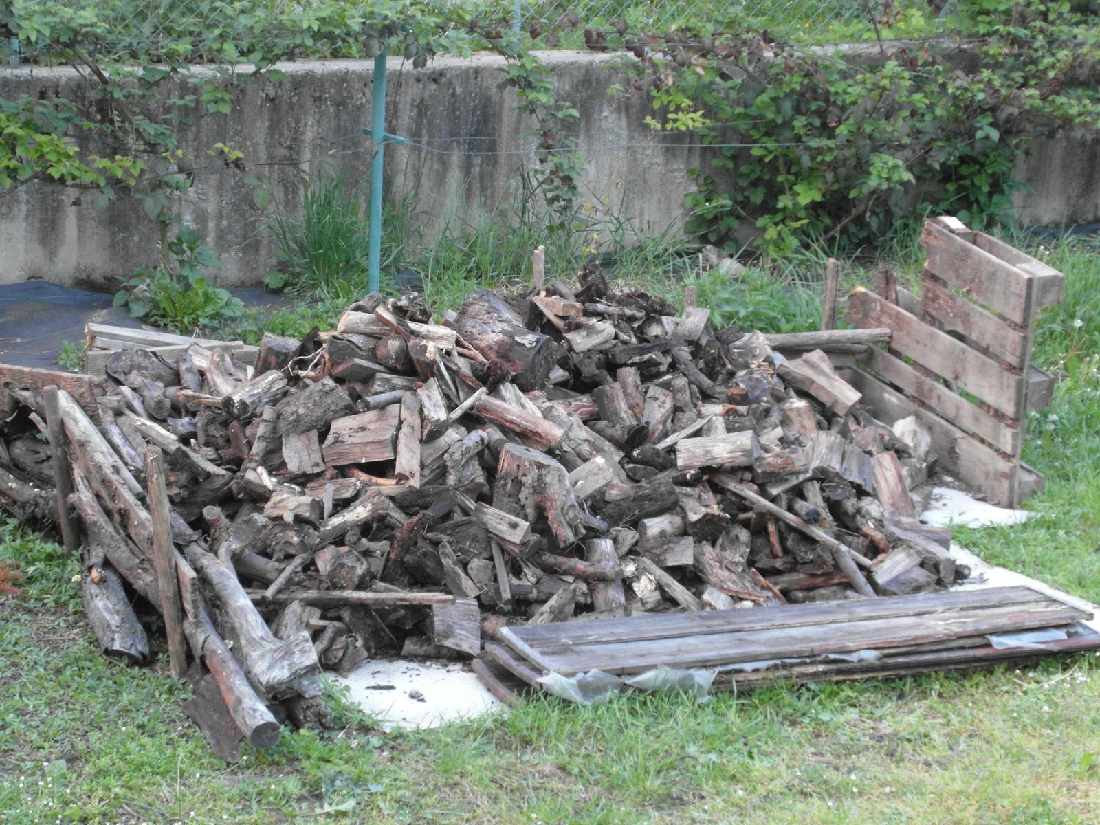 Darujem drevo - Obrázok č. 1