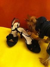 topánočky k popolnočkám..
