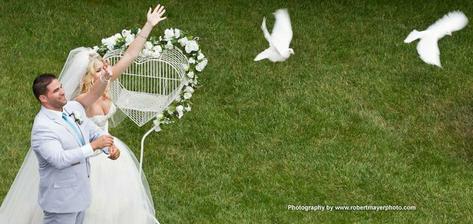 holuby budú...ale nie biele...