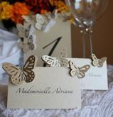Menovky a motýliky na svadbe - Obrázok č. 21