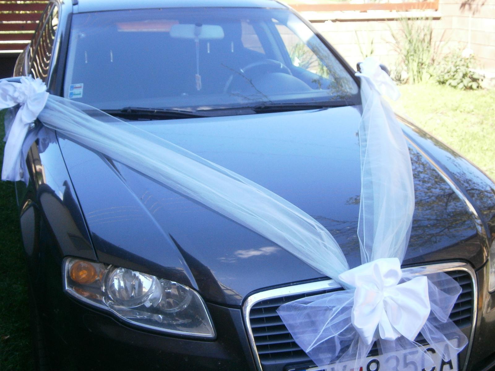 Svadobné výzdoby na AUTO - Obrázok č. 88