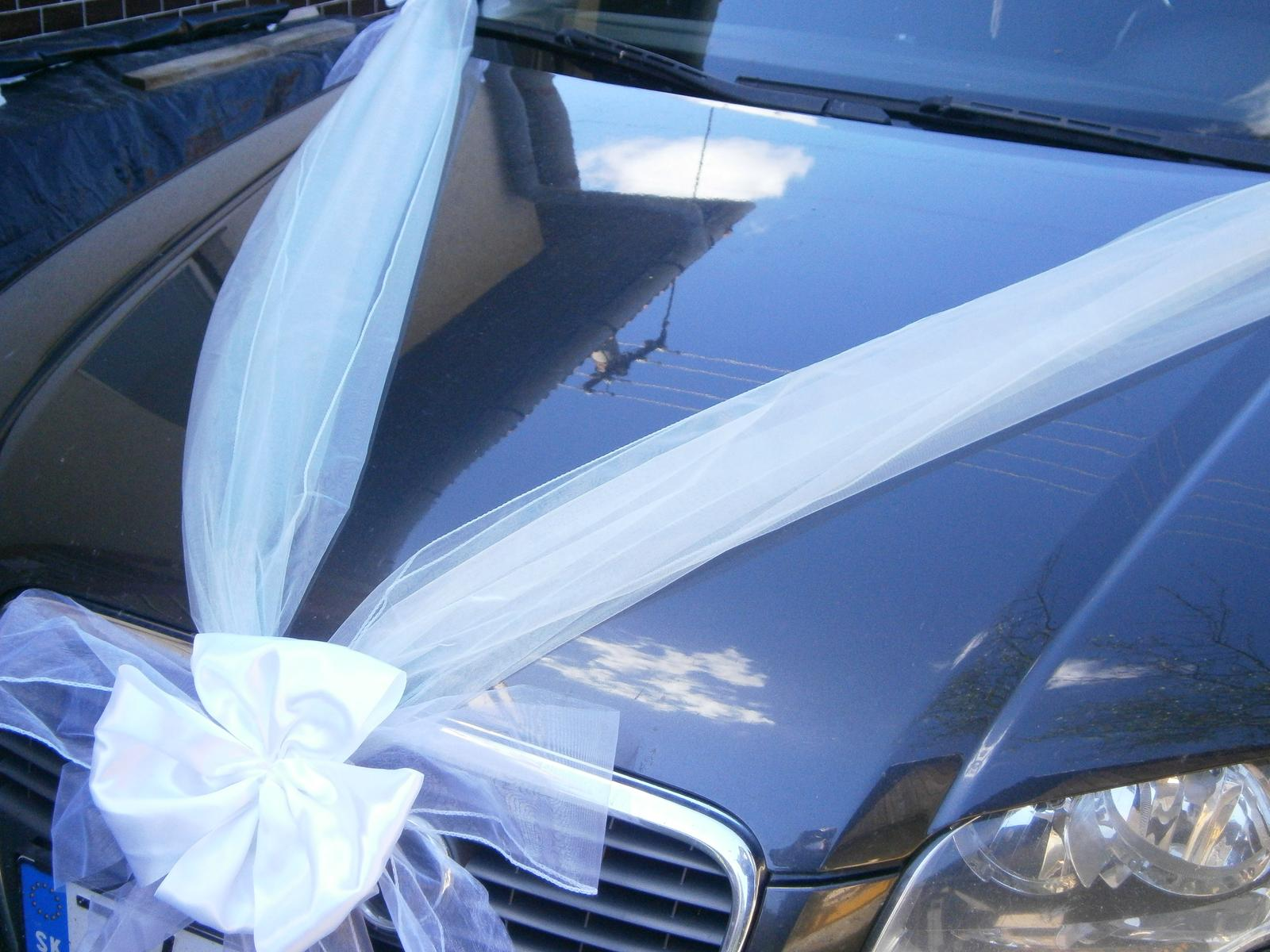Svadobné výzdoby na AUTO - Obrázok č. 91