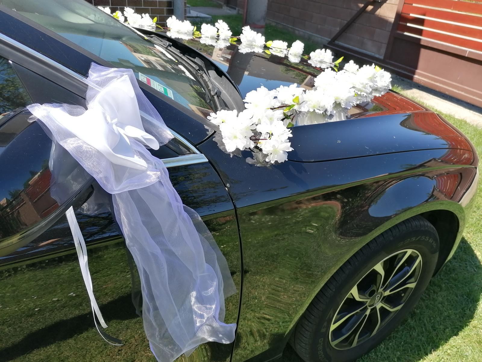 Svadobné AUTO - Obrázok č. 68