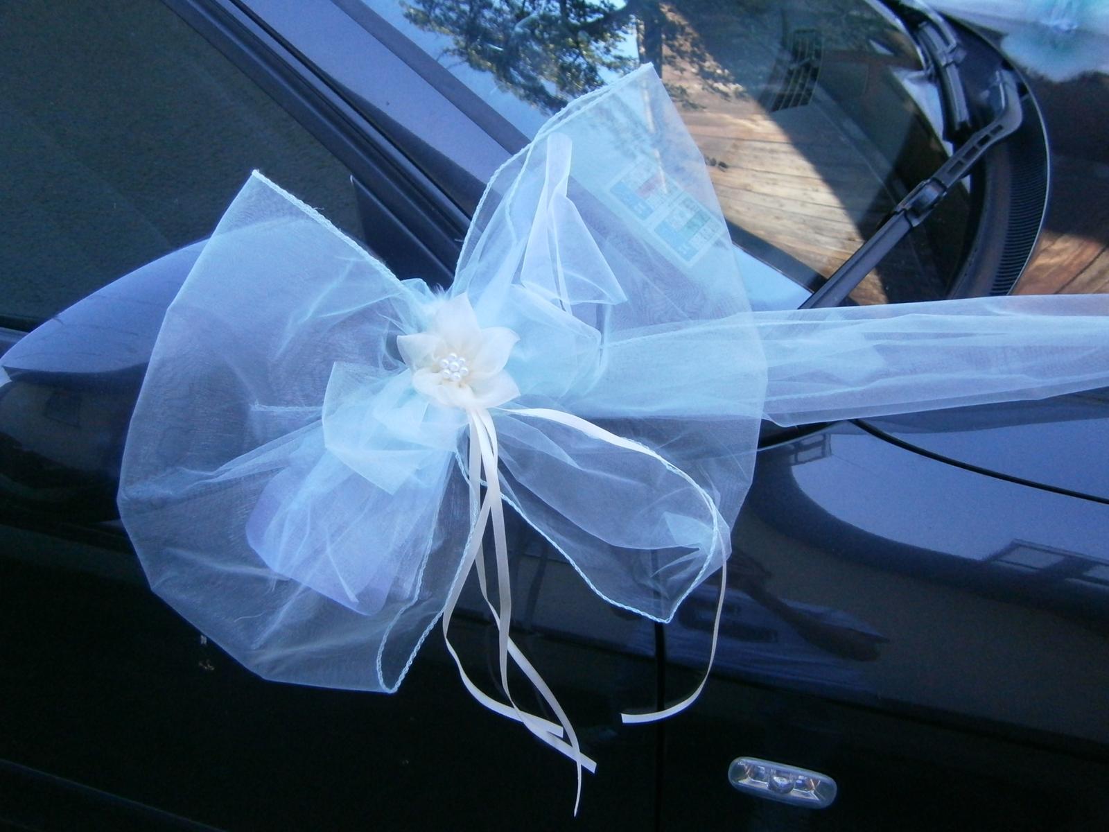 Mentolová pom-pom výzdoba svadobného auta - Obrázok č. 2