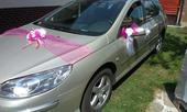 Ružová výzdoba na auto - 6 ks,
