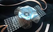 Lososovo biely náramok s diamantovým pásom,